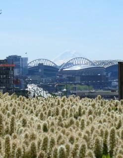 Mt Rainier behind Seattle