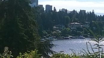 Bellevue from Groat Point