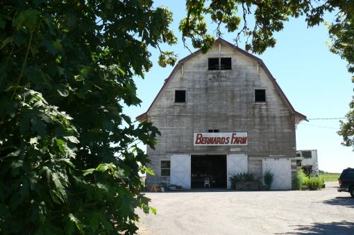 Bernards Farm Oregon
