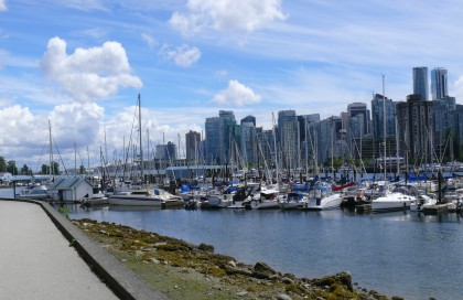 Just a few of Vancouvers boat population