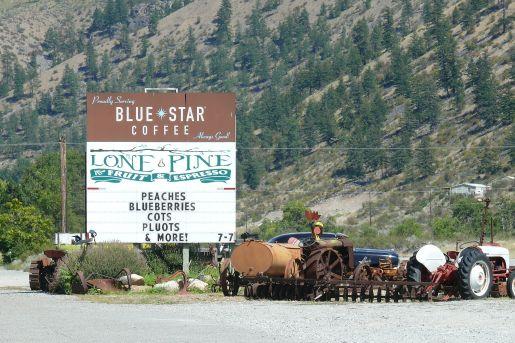 Lone Pine Store near Chelan Falls