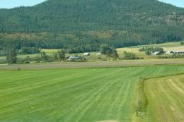 Idaho or Montana?