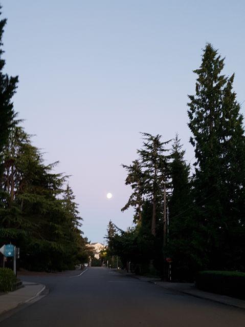 Full moon in Bellevue