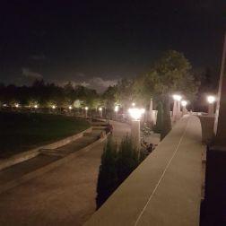 Downtown Bellevue Park