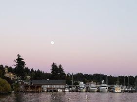 Balmy Evening at Maydenbauer Bay